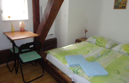 Double room (standard) Tara Pension