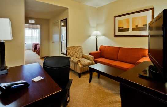 Suite Holiday Inn Express & Suites LAKELAND NORTH - I-4