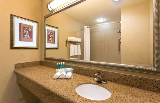 Information Holiday Inn Express & Suites LAKELAND NORTH - I-4