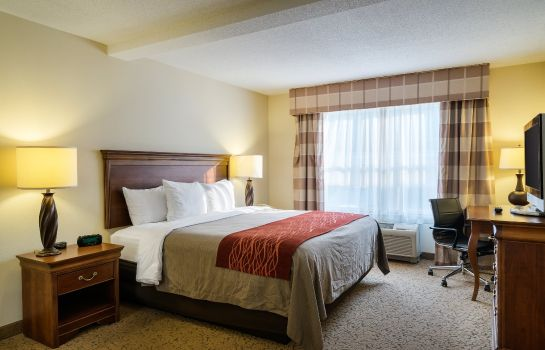 Suite Comfort Inn and Suites Dover