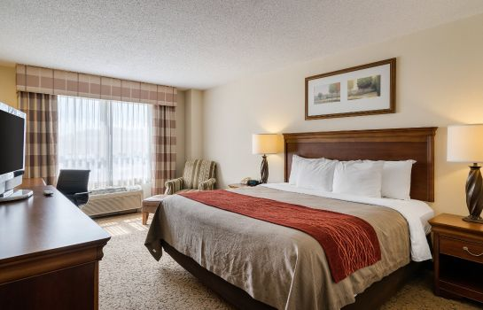 Room Comfort Inn and Suites Dover