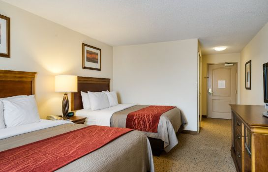 Chambre Comfort Inn & Suites Dover