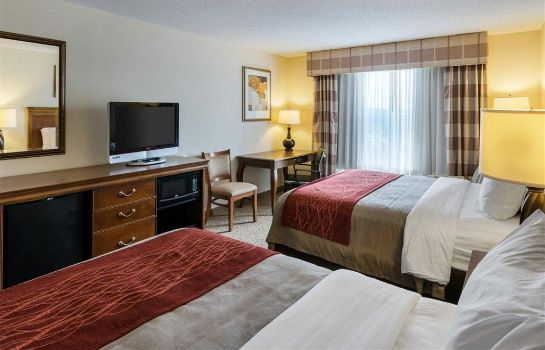 Zimmer Comfort Inn and Suites Dover