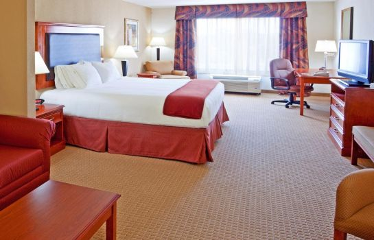 Suite Holiday Inn Express & Suites LATHAM