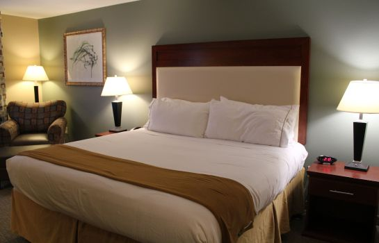 Zimmer Holiday Inn Express & Suites BATON ROUGE EAST