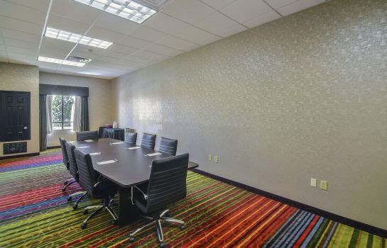 Conference room Holiday Inn ARLINGTON NE-RANGERS BALLPARK