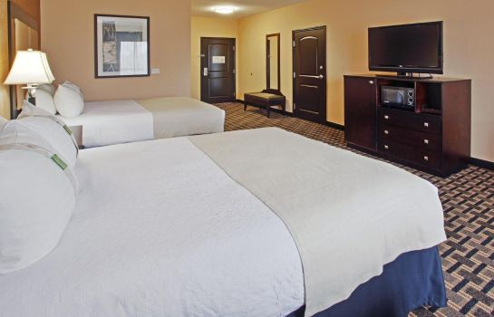Room Holiday Inn ARLINGTON NE-RANGERS BALLPARK