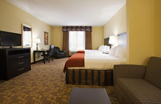 Suite Holiday Inn Express & Suites SNYDER