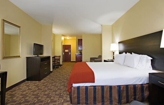 Zimmer Holiday Inn Express & Suites SNYDER
