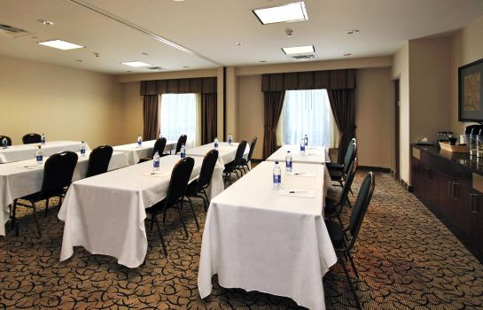 Sala konferencyjna Holiday Inn Express & Suites OTTAWA AIRPORT