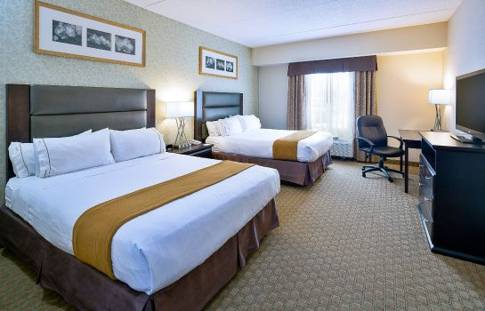 Zimmer Holiday Inn Express & Suites OTTAWA AIRPORT