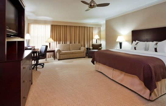 Suite Holiday Inn BATON ROUGE COLLEGE DRIVE I-10