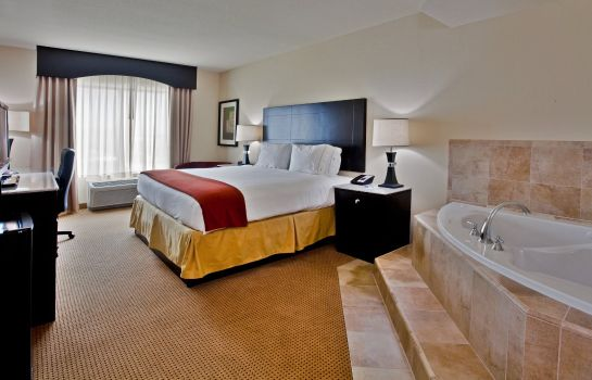 Suite Holiday Inn Express & Suites ORLANDO - INTERNATIONAL DRIVE