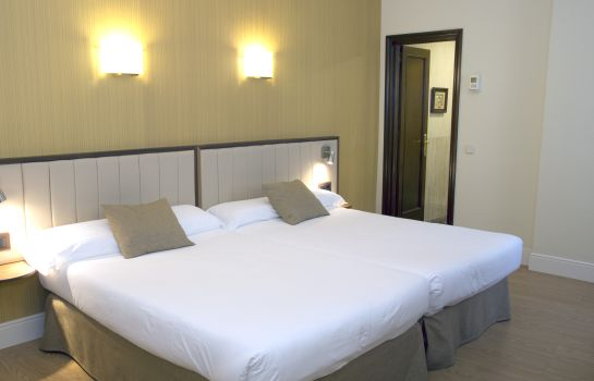 Double room (standard) Best Western Los Condes