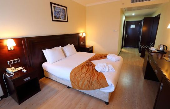Single room (standard) Eser Diamond Hotel & Convention Center