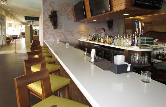 Bar del hotel Palmetto Vacation Rentals