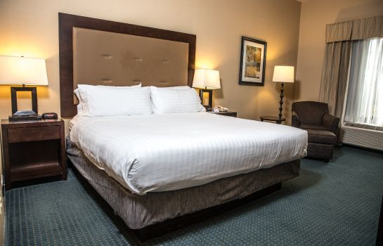 Chambre Holiday Inn Express & Suites DETROIT-NOVI