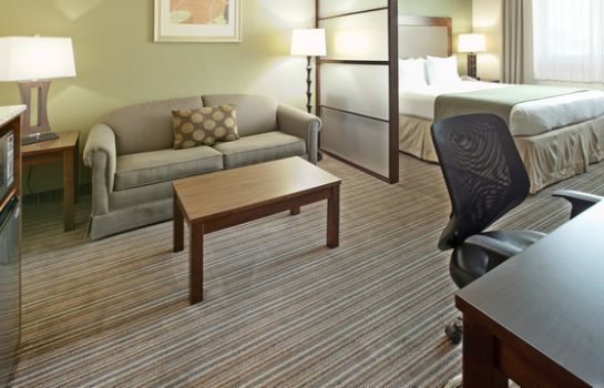 Suite Holiday Inn Express & Suites FORT WORTH DOWNTOWN
