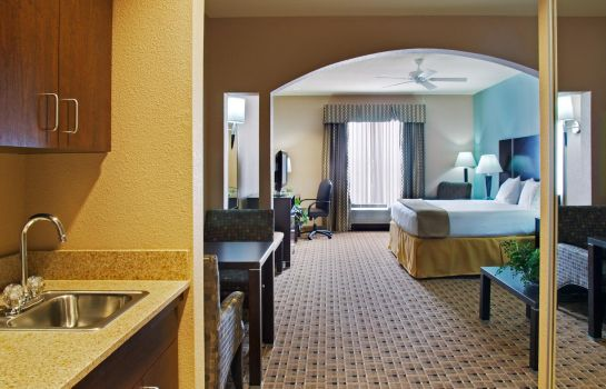 Suite Holiday Inn Express & Suites HOUSTON ENERGY CORRIDOR-W OAKS