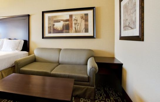 Suite Holiday Inn Express & Suites WOODLAND HILLS