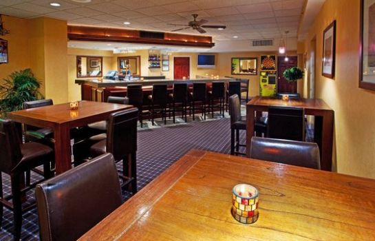 Bar del hotel Holiday Inn NIAGARA FALLS-SCENIC DOWNTOWN