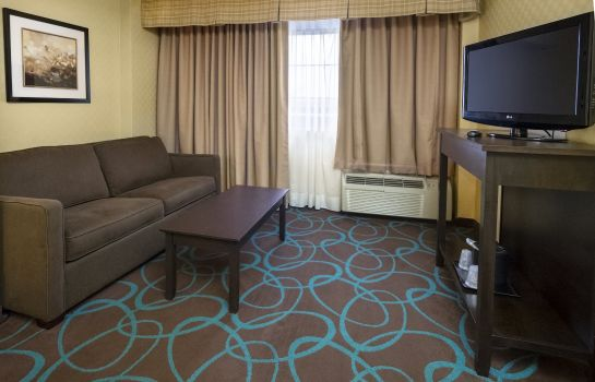Suite Holiday Inn NIAGARA FALLS-SCENIC DOWNTOWN