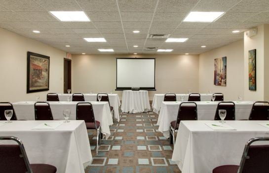 Sala de reuniones Holiday Inn NIAGARA FALLS-SCENIC DOWNTOWN