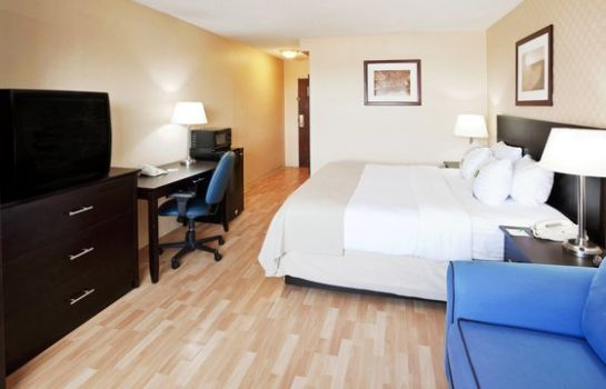 Zimmer Holiday Inn NIAGARA FALLS-SCENIC DOWNTOWN