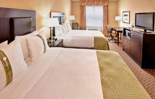 Zimmer Holiday Inn & Suites MEMPHIS -  WOLFCHASE GALLERIA