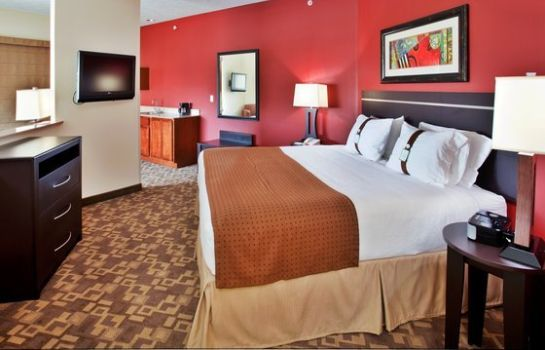 Suite Holiday Inn OMAHA DOWNTOWN-AIRPORT