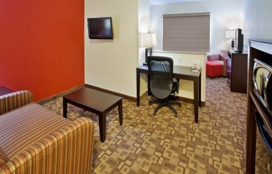 Zimmer Holiday Inn OMAHA DOWNTOWN-AIRPORT
