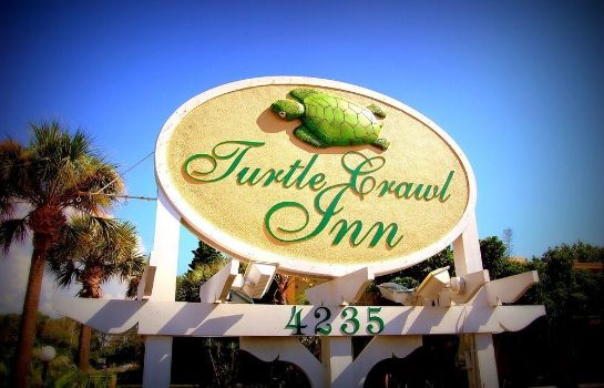 Information Turtle Crawl Inn