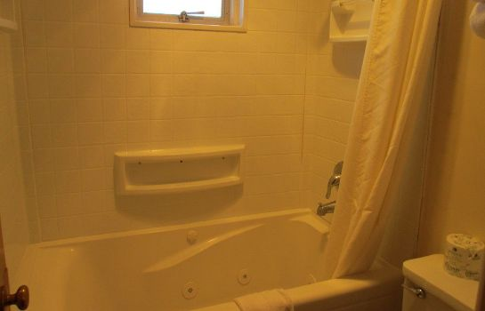 Bagno in camera Town House Motel Inc