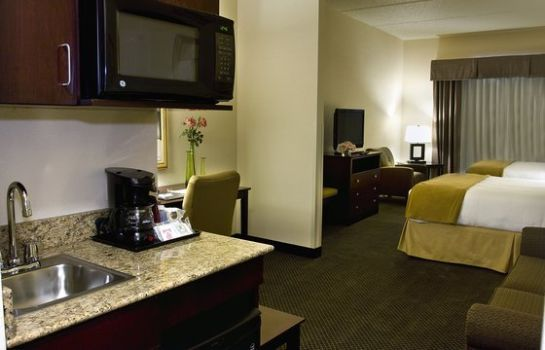 Suite Holiday Inn Express & Suites CHICAGO WEST-O'HARE ARPT AREA