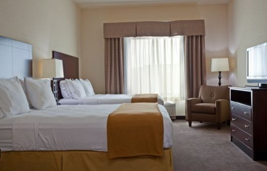 Room Holiday Inn Express & Suites CHICAGO WEST-O'HARE ARPT AREA