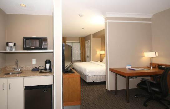 Zimmer SpringHill Suites Charleston North/Ashley Phosphate