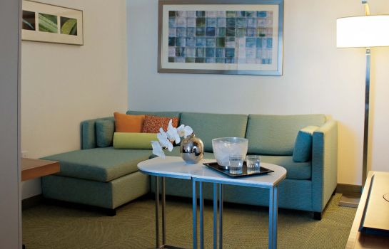 Zimmer SpringHill Suites Cincinnati Airport South