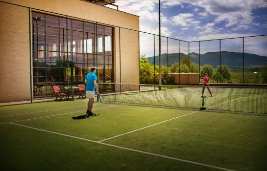 Tennis court Wellness Hotel Diplomat