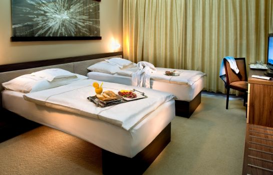 Double room (standard) Wellness Hotel Diplomat