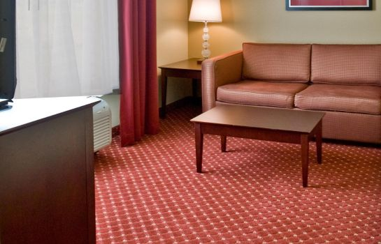 Suite Holiday Inn Express & Suites ORLANDO SOUTH-DAVENPORT