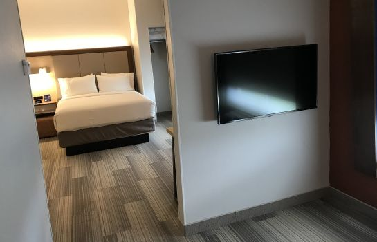 Zimmer Holiday Inn Express & Suites ORLANDO SOUTH-DAVENPORT