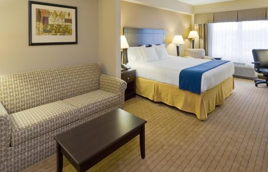 Suite Holiday Inn Express & Suites FT MYERS EAST- THE FORUM