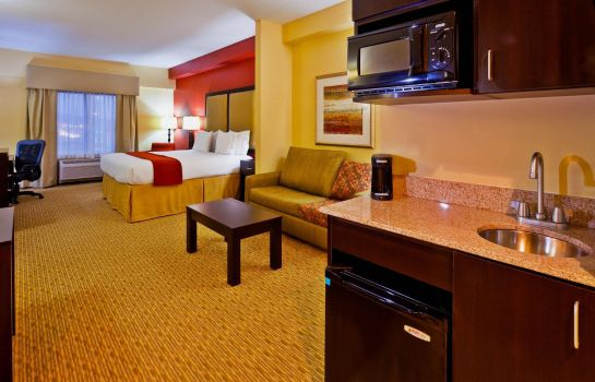 Suite Holiday Inn Express & Suites NASHVILLE-OPRYLAND