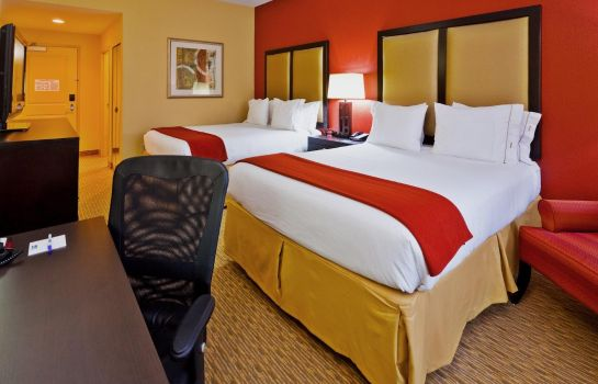 Zimmer Holiday Inn Express & Suites NASHVILLE-OPRYLAND
