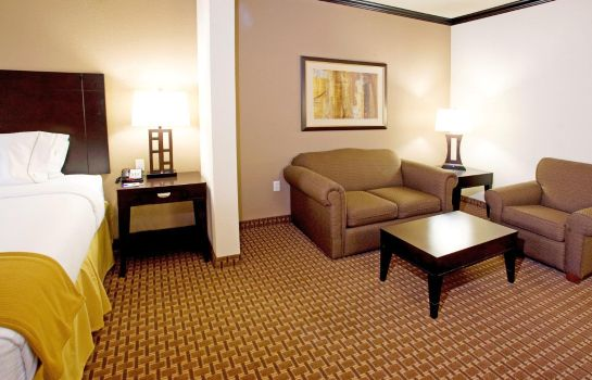 Suite Holiday Inn Express & Suites CORPUS CHRISTI