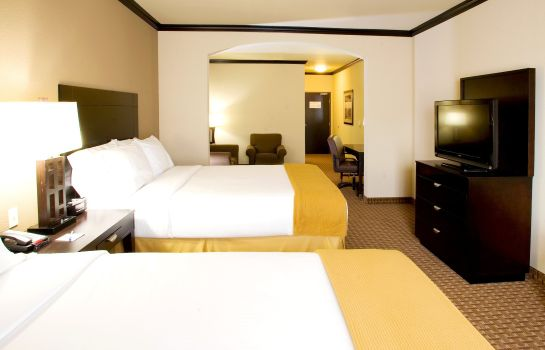 Habitación Holiday Inn Express & Suites CORPUS CHRISTI