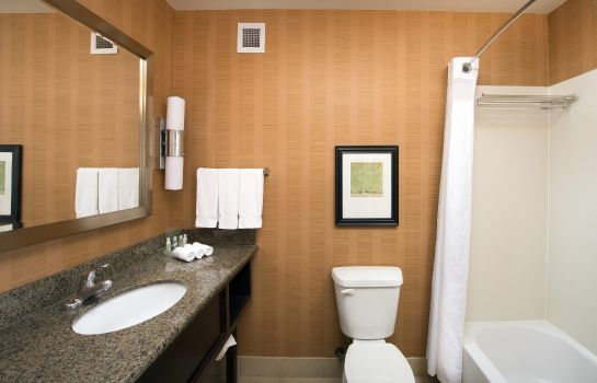Info Holiday Inn & Suites DENVER AIRPORT