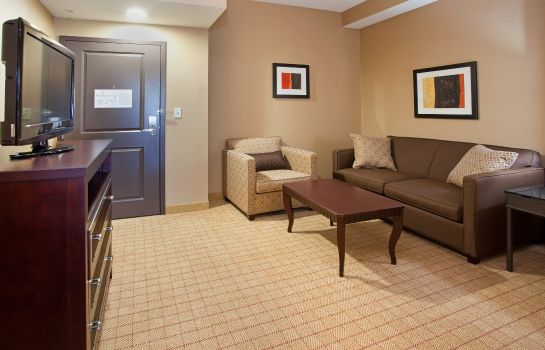 Zimmer Holiday Inn & Suites DENVER AIRPORT