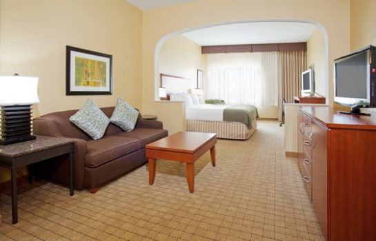 Suite Holiday Inn Express & Suites DENVER AIRPORT
