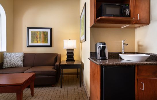 Information Holiday Inn Express & Suites DENVER AIRPORT